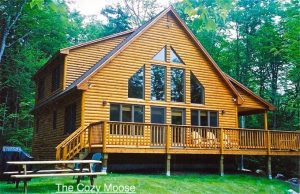 Cozy Moose Lakeside Cabin Rentals